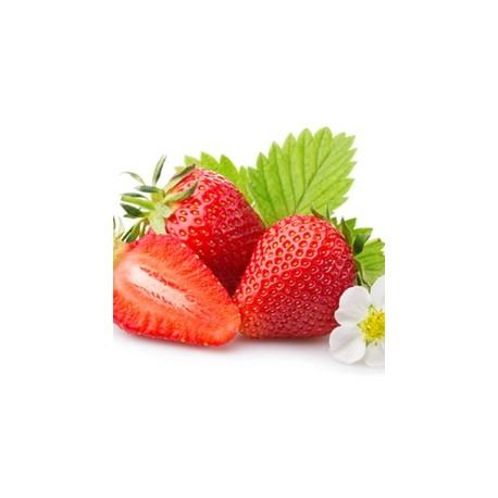 Organic Strawberry Flavor