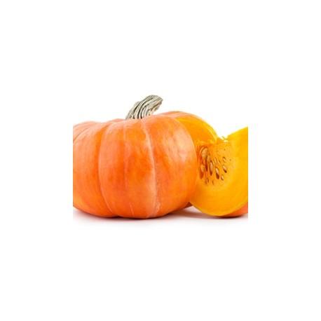 Pumpkin Flavor