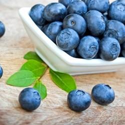 Blueberry (Wild) Flavor