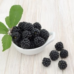 Boysenberry Flavor