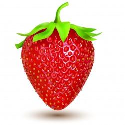 FA Strawberry  (FA06)