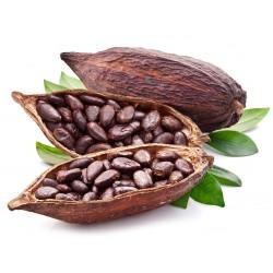 FA Cocoa (FA20)