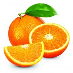 FA Orange (FA22)