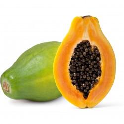 FA Papaya (FA31)