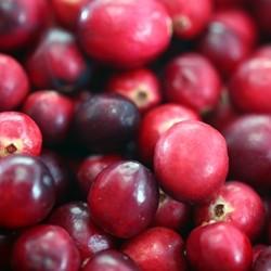 Cranberry Flavor