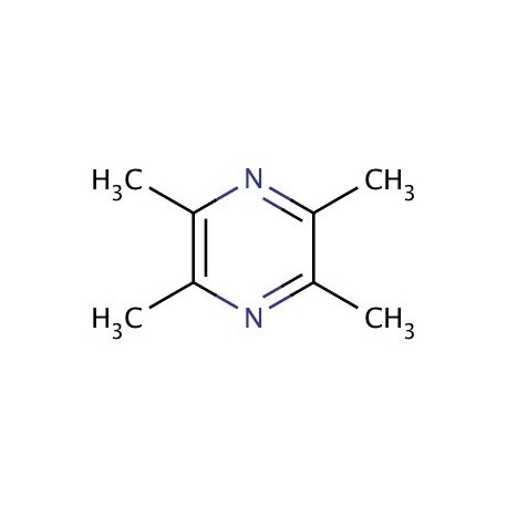 Tetramethyl-pyrazine 10% (PG) 30ml