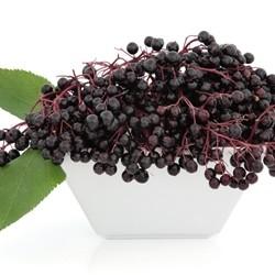 Elderberry Flavor